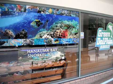 Hanauma Bay Dive Tours - Hanauma Bay Snorkel Tours