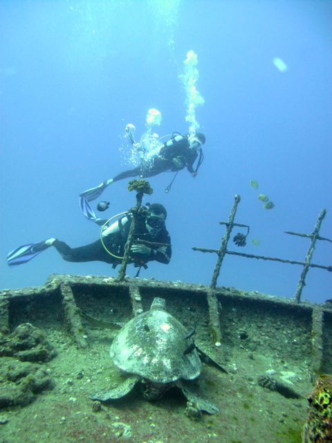 Hawaii ship wreck diving