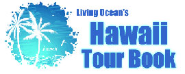 hawaii-tours-logo1